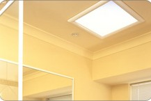 skylights suppliers