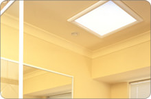 Direct Skylights